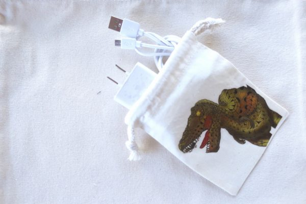 恐竜巾着ティラノサウルス
