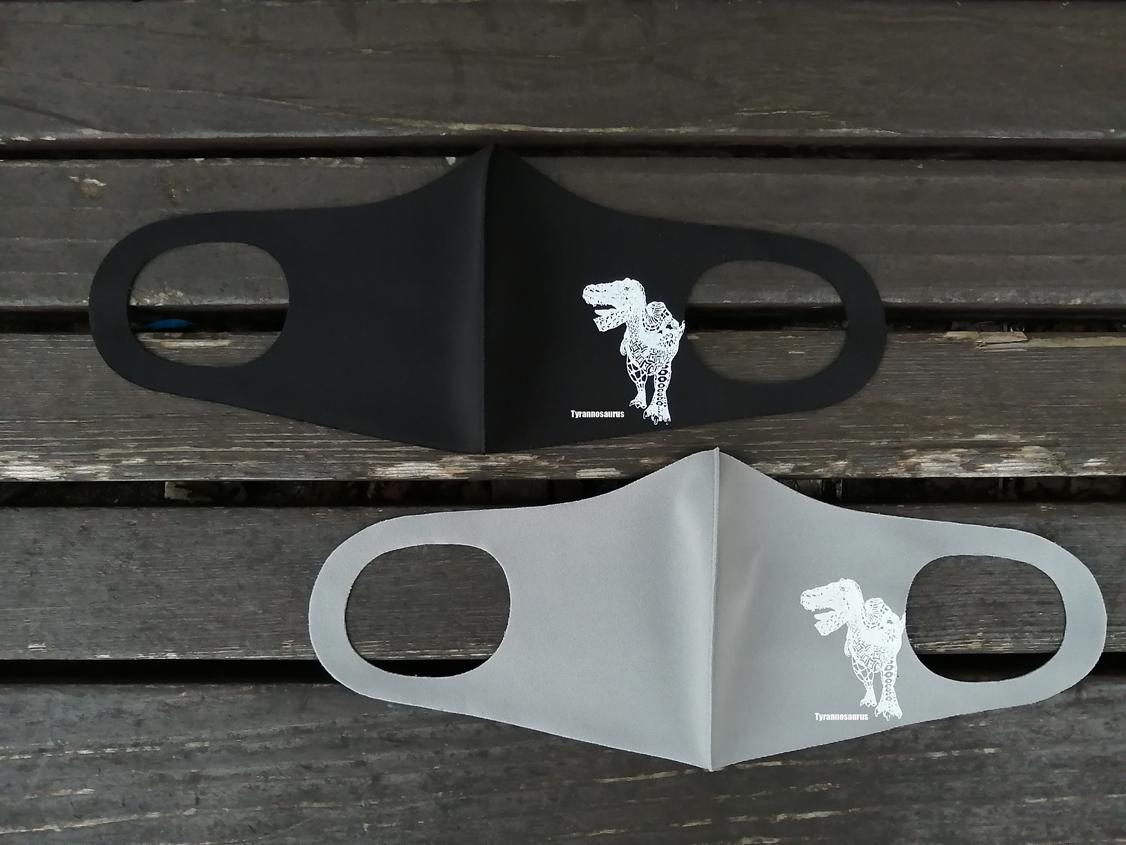 恐竜デザインマスク タモコタモ